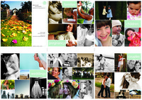 Tri_fold_brochure_sm_1